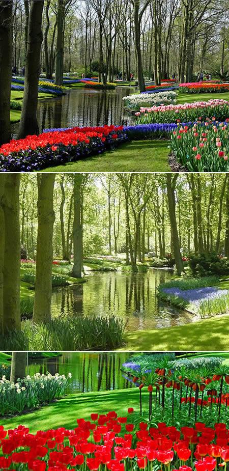 nejkrásnější zahrada Nizozemí