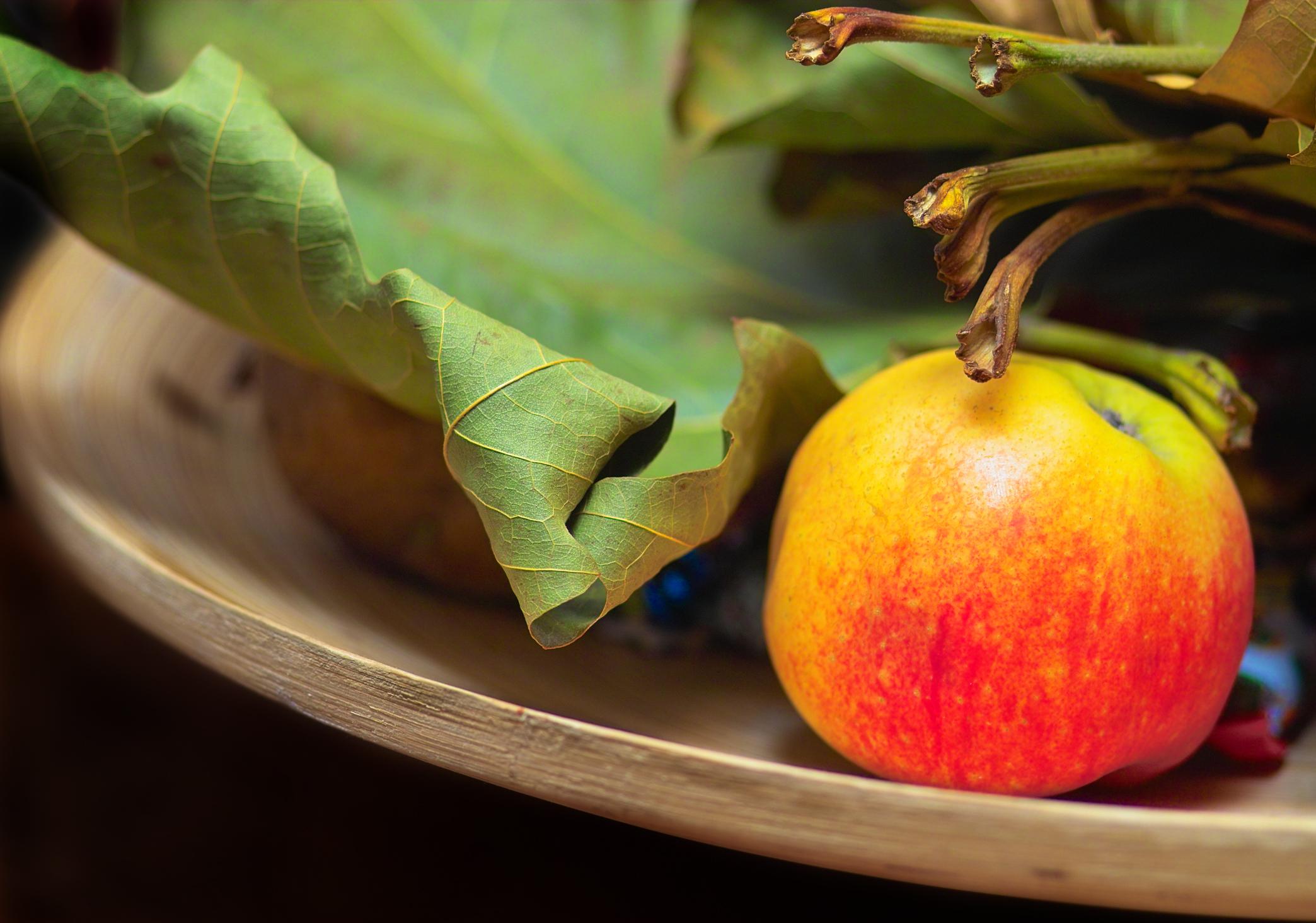 jablko na míse - bydleni nas bavi