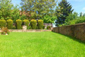 Péče o trávník: základem je sekání