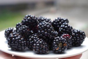 Ostružiny: zdraví ukryté v černé perle