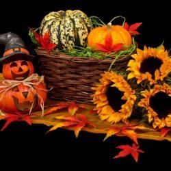 halloweenská výzdoba