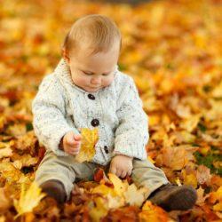 Kam se spadaným listím?