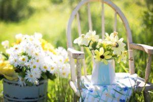 Červen v zahradě: sklízíme první úrodu