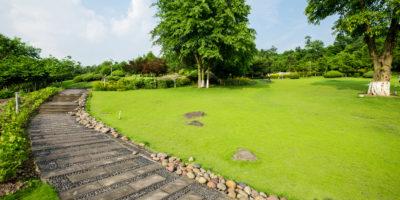 Zahrada v  srpnu: práce je před podzimem ještě dost