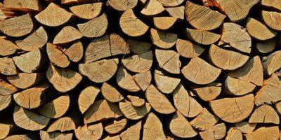 Zásoba dřeva. Skládejte pečlivě, v zimě za to budete rádi.