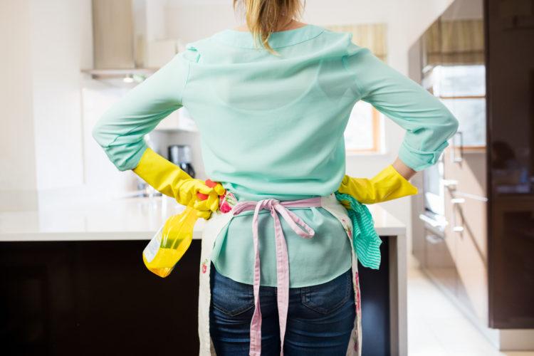 úklid, paní v domácnosti