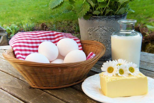 Sádlo a máslo: návrat živočišných tuků
