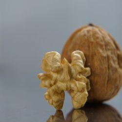 vlašský ořech
