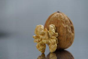 Ořešák královský: zdraví v listech i plodech