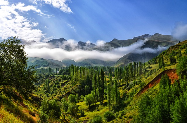 hory, krajina