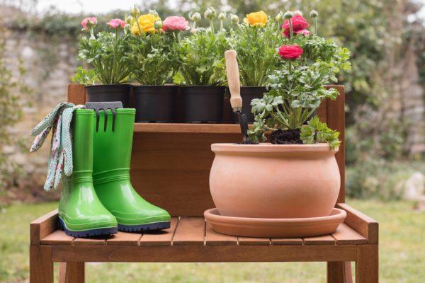Radosti na májové zahradě! Nebojte se kombinovat, získáte květinový ráj a odpudíte škůdce