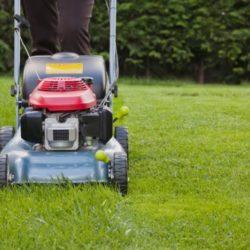 Hrozí velké sucho! Jak zařídit, aby váš trávník přežil? Zkuste tyhle tipy