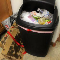 7 tipů, jak se zbavit otravného zápachu z koše na odpadky!